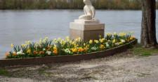 La Loire à Neuvy