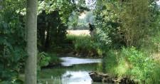 La Vrille: Parcours de pêche